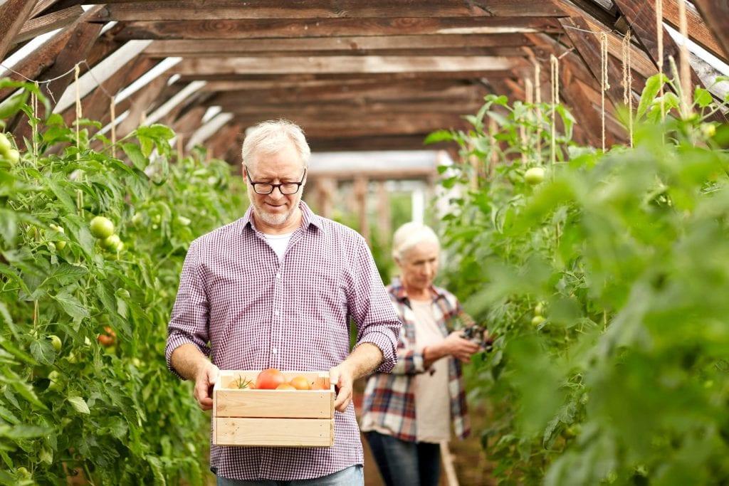Temporarily Reduced Pension Drawdown
